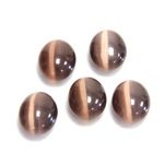 Fiber-Optic Cabochon - Oval 12x10MM CAT'S EYE BROWN