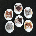German Plastic Porcelain Decal Painting - Cats Oval 25x18MM ON CHALKWHITE BASE